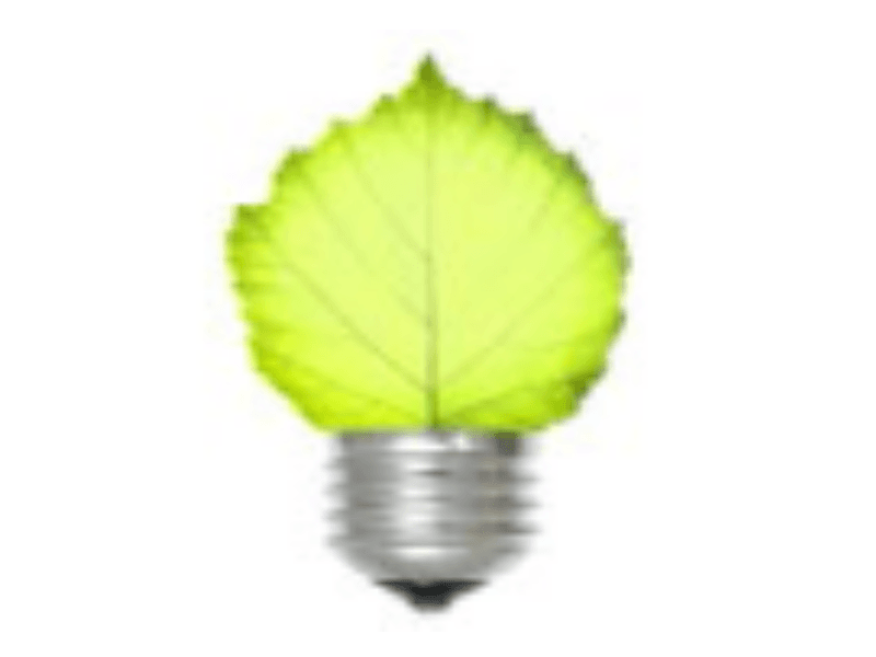 Light Bulb with Leaf