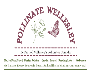 Pollinate Wellesley